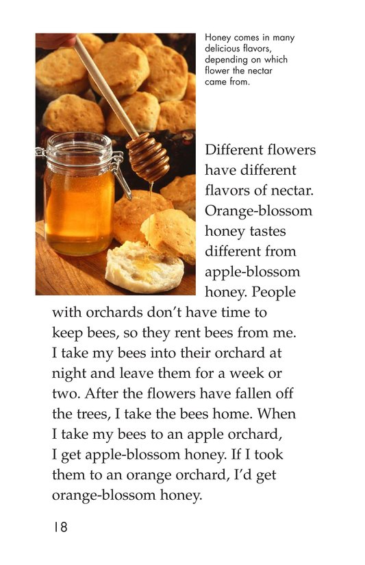 Book Preview For The Beekeeper Page 18