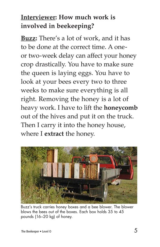 Book Preview For The Beekeeper Page 5