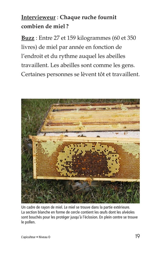 Book Preview For The Beekeeper Page 19