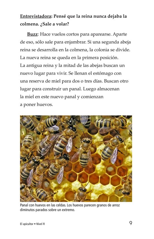 Book Preview For The Beekeeper Page 9