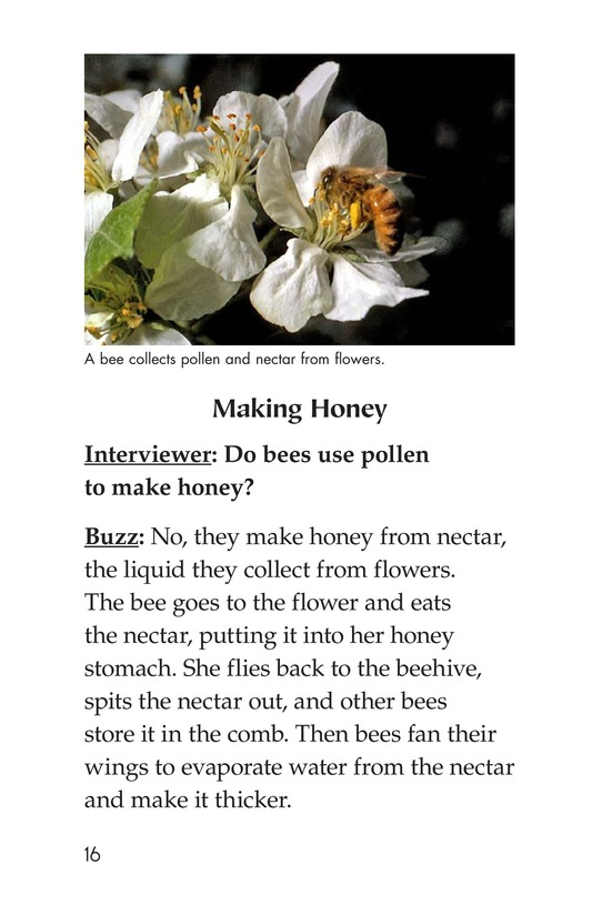 Book Preview For The Beekeeper Page 16