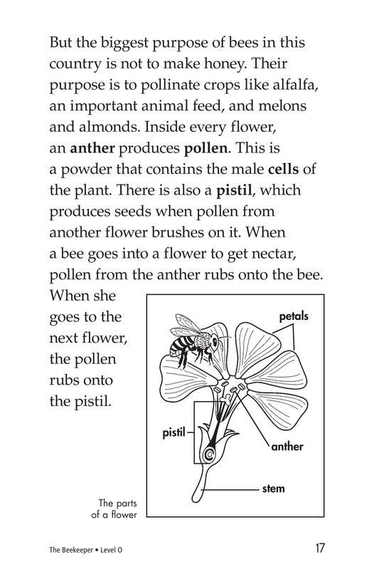 Book Preview For The Beekeeper Page 17
