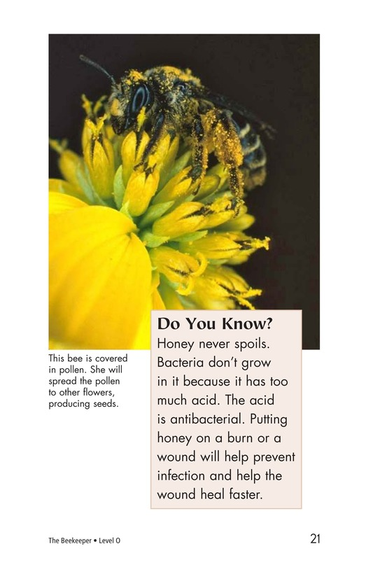 Book Preview For The Beekeeper Page 21