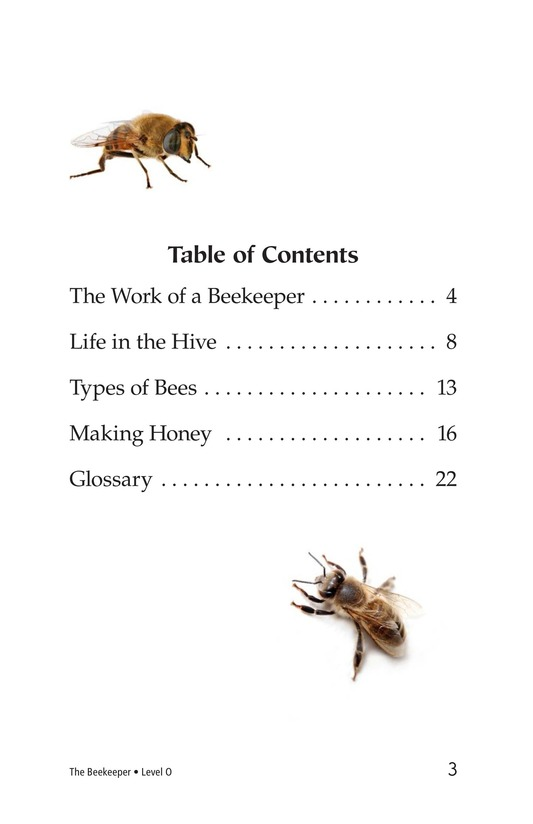 Book Preview For The Beekeeper Page 3