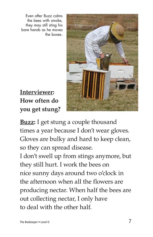 Book Preview For The Beekeeper Page 7