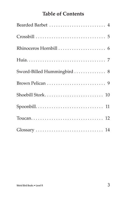 Book Preview For Weird Bird Beaks Page 3