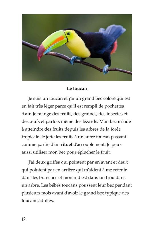 Book Preview For Weird Bird Beaks Page 12