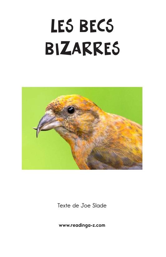 Book Preview For Weird Bird Beaks Page 2
