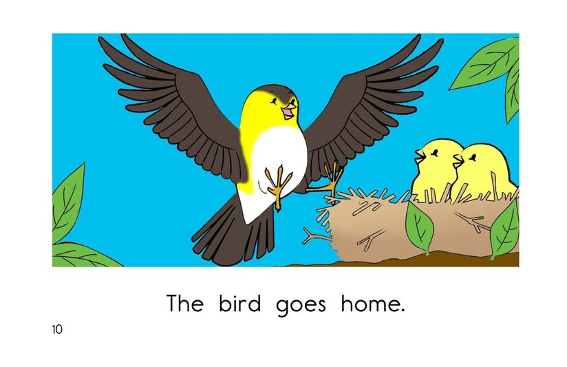 Book Preview For Bird Goes Home Page 10