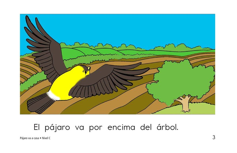 Book Preview For Bird Goes Home Page 3