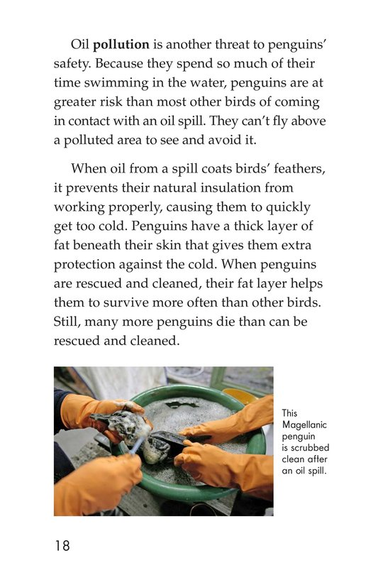 Book Preview For Penguins Page 18