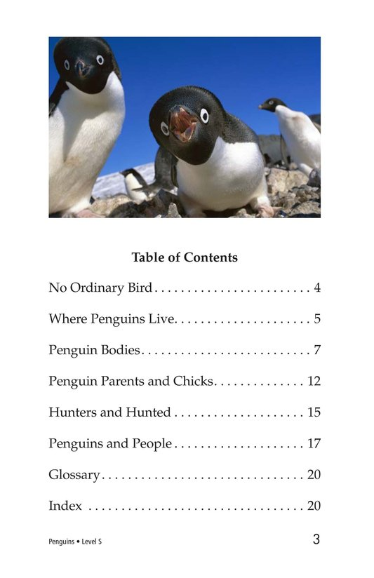 Book Preview For Penguins Page 3