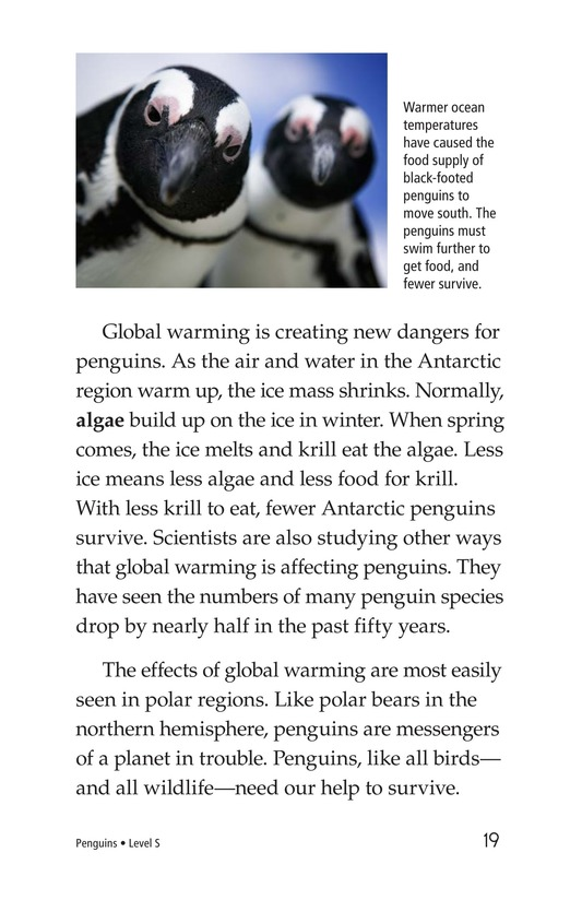 Book Preview For Penguins Page 19