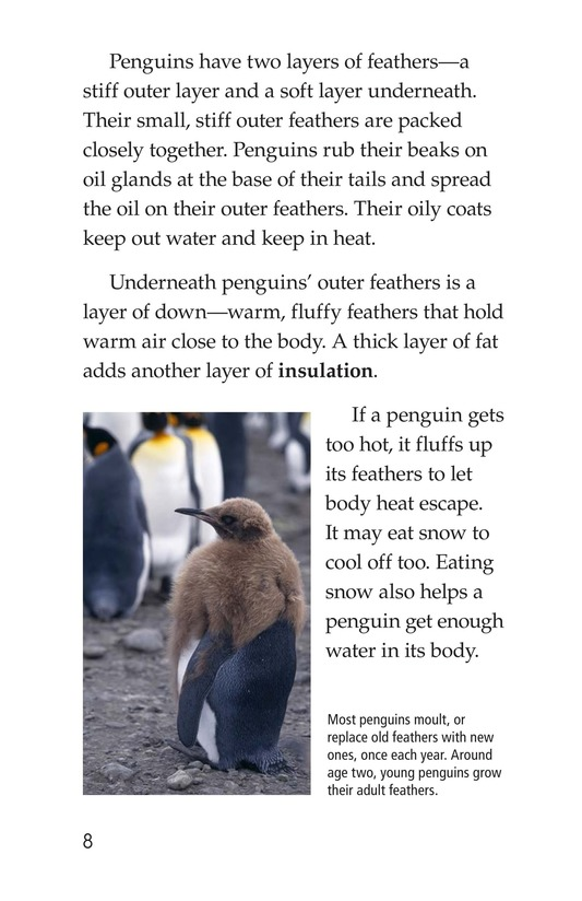Book Preview For Penguins Page 8