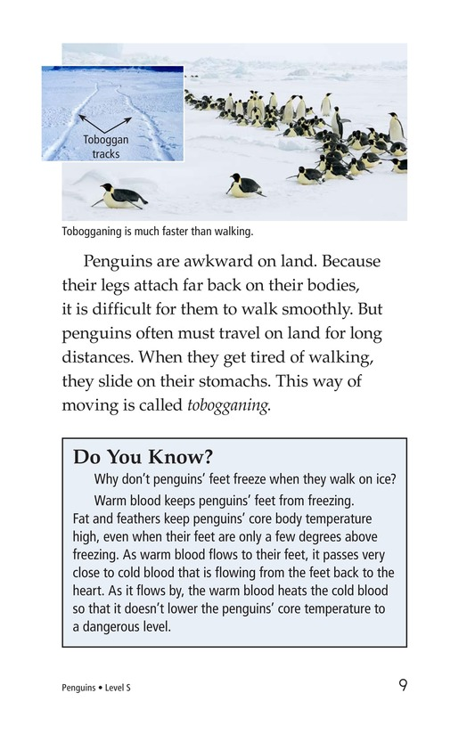 Book Preview For Penguins Page 9