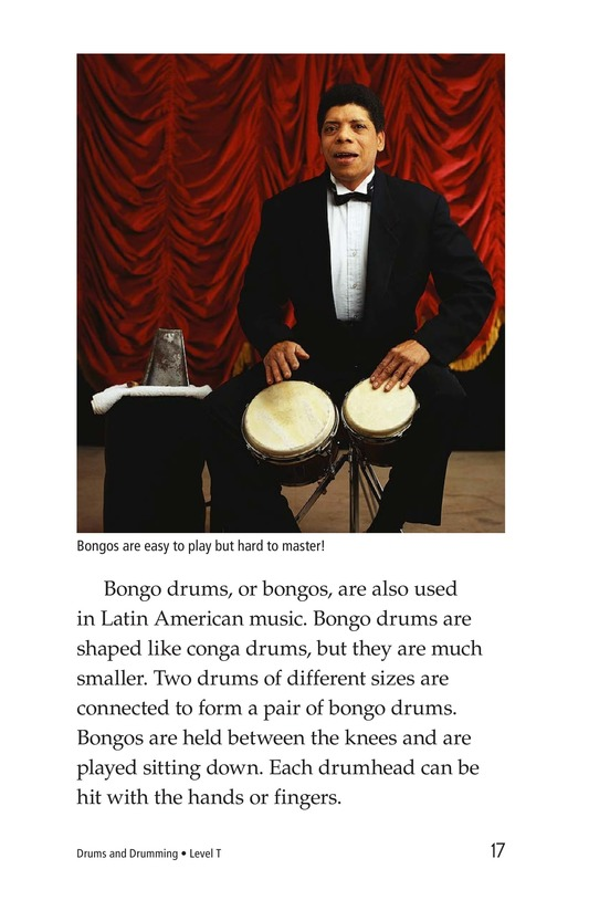 Book Preview For Drums and Drumming Page 17