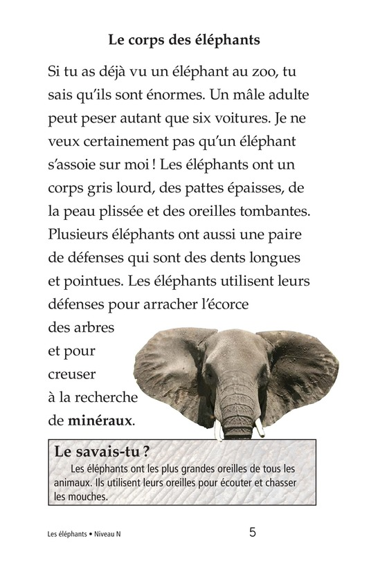 Book Preview For Elephants Page 5