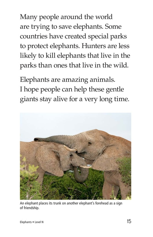 Book Preview For Elephants Page 15