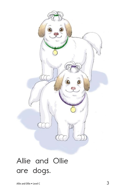 Book Preview For Allie and Ollie Page 3