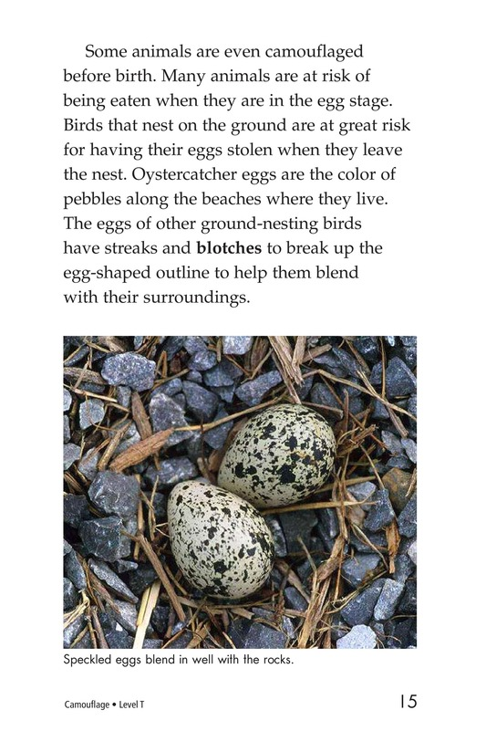 Book Preview For Camouflage Page 15