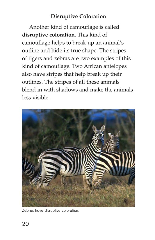 Book Preview For Camouflage Page 20