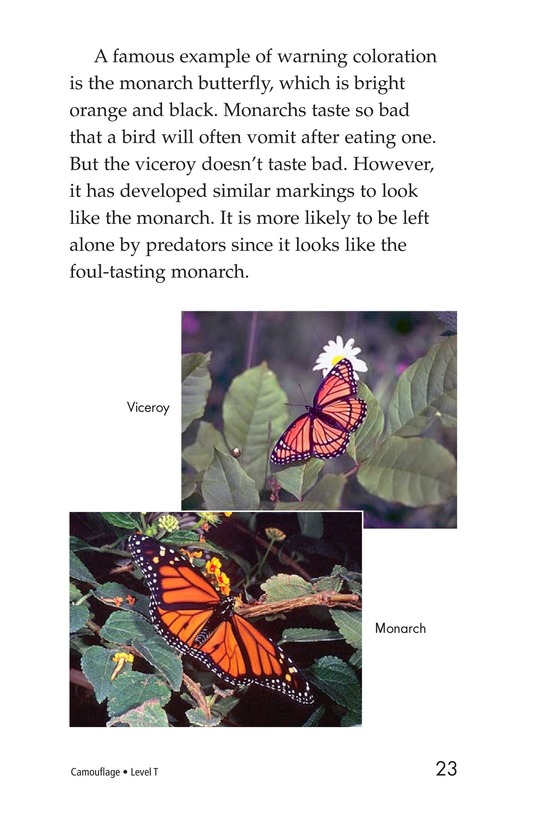 Book Preview For Camouflage Page 23
