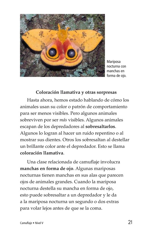 Book Preview For Camouflage Page 21