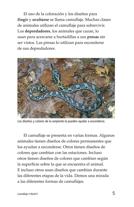 Book Preview For Camouflage Page 5