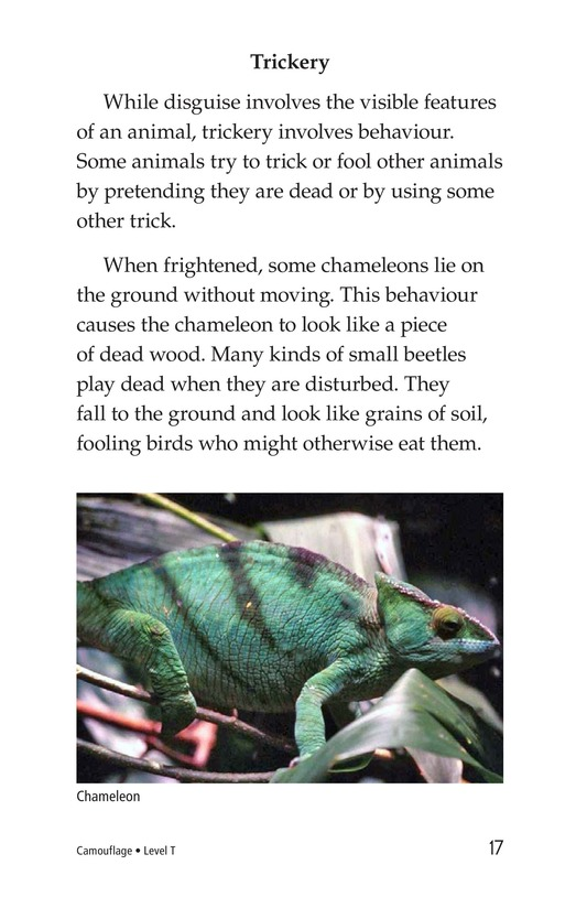 Book Preview For Camouflage Page 17