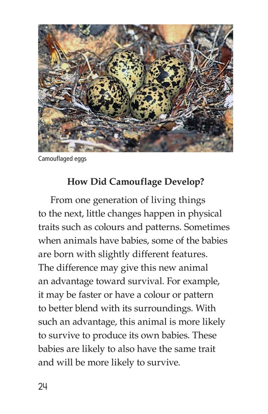 Book Preview For Camouflage Page 24