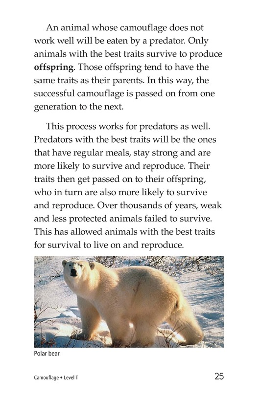 Book Preview For Camouflage Page 25