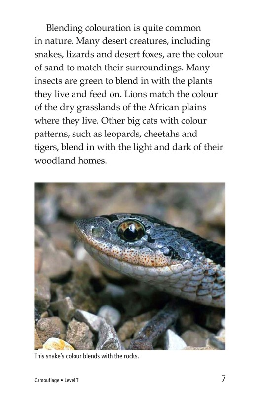 Book Preview For Camouflage Page 7
