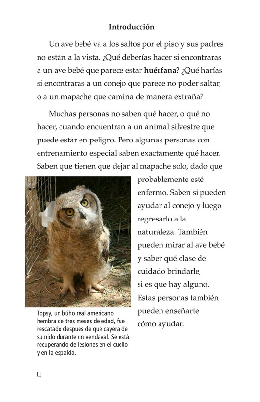 Book Preview For Wildlife Rescue Page 4