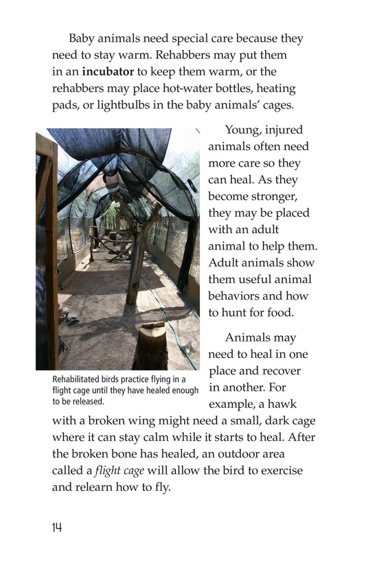 Book Preview For Wildlife Rescue Page 14
