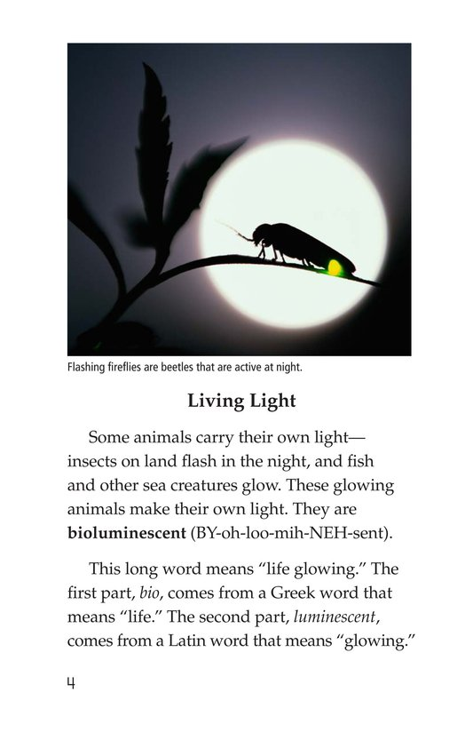 Book Preview For Glow-in-the-Dark Animals Page 4