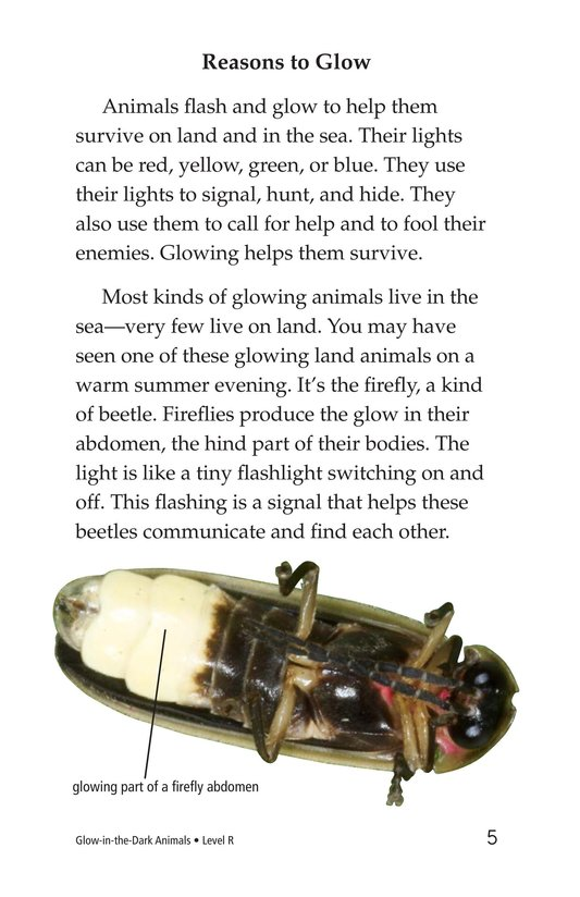 Book Preview For Glow-in-the-Dark Animals Page 5