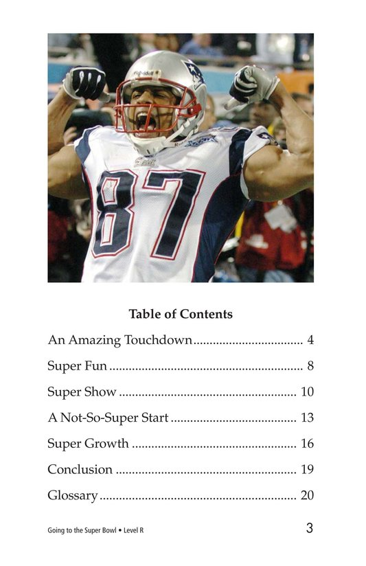 Book Preview For Going to the Super Bowl Page 3