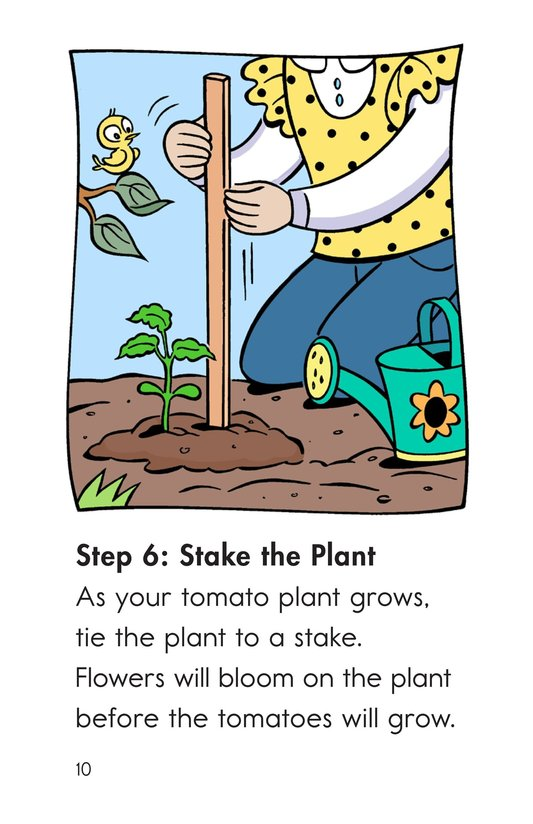 Book Preview For Grow Tomatoes in Six Steps Page 10