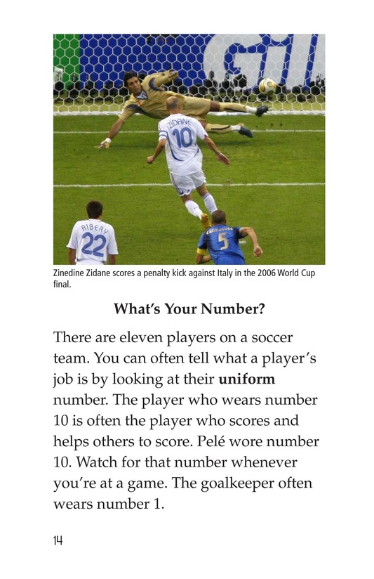 Book Preview For World Cup Soccer Page 14
