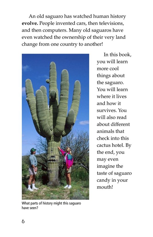Book Preview For The Mighty Saguaro Cactus Page 6