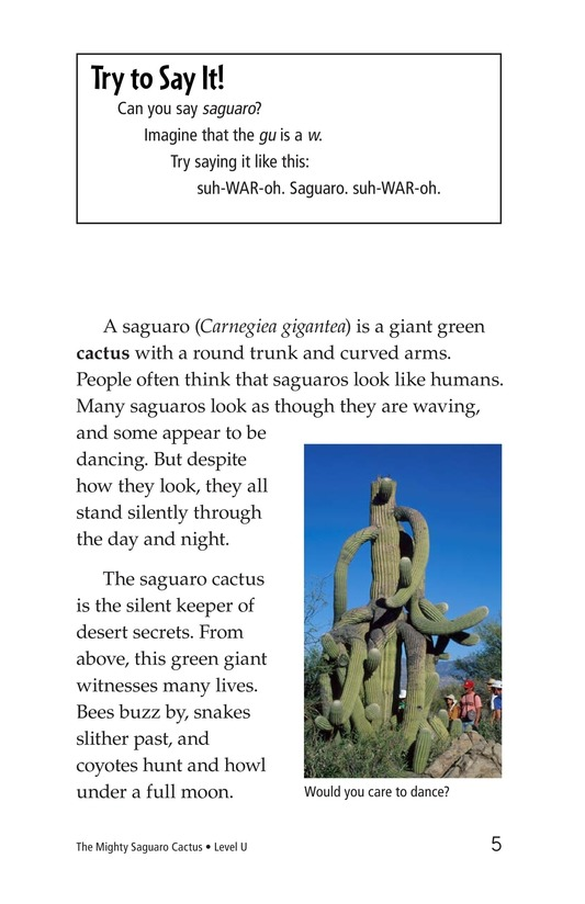Book Preview For The Mighty Saguaro Cactus Page 5