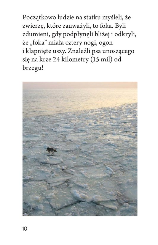 Book Preview For Baltic Rescue Page 10