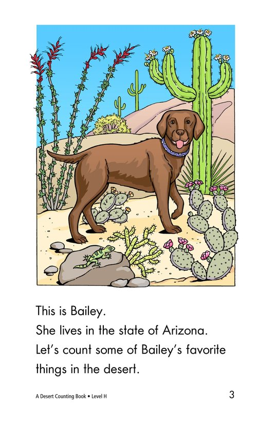 Book Preview For A Desert Counting Book Page 3