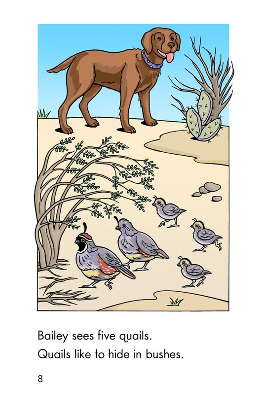 Book Preview For A Desert Counting Book Page 8