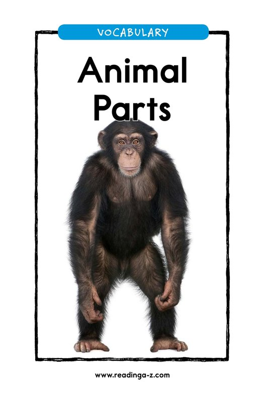 Book Preview For Animal Parts Page 1