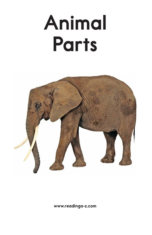 Book Preview For Animal Parts Page 2