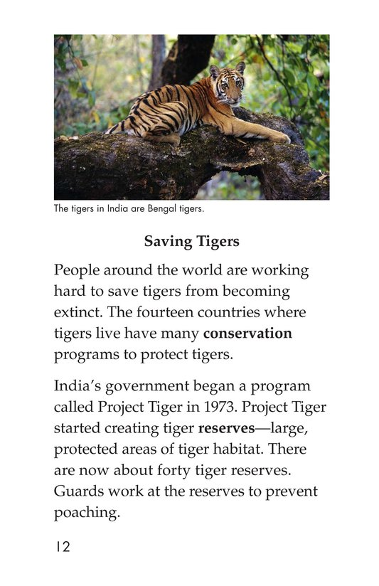 Book Preview For Saving the Last Wild Tigers Page 12