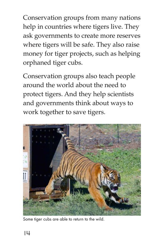 Book Preview For Saving the Last Wild Tigers Page 14