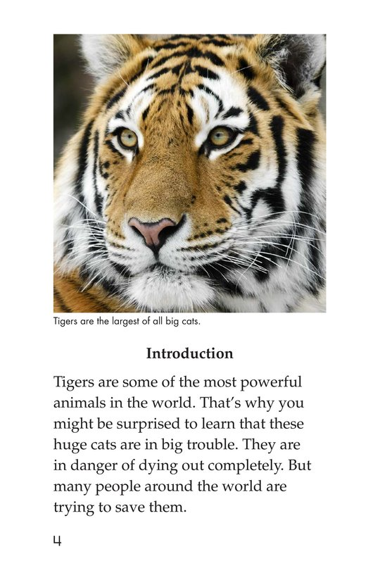 Book Preview For Saving the Last Wild Tigers Page 4