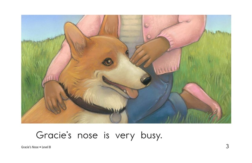 Book Preview For Gracie's Nose Page 3